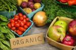 Ilustrasi bahan makanan organik (sciencedaily.com)