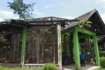Taman Satwa Taru Jurug (JIBI/dok)