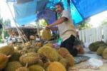 DURIAN KALIBAWANG : Dampak El Nino, Panen Durian Kali Ini Tak Memuaskan