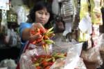 Pedagang di Pasar Kota Klaten menunjukkan cabai rawit yang harganya saat ini meroket hingga Rp62.000/ Kg, Jumat (21/2/2014). Selain cabai rawit, harga sayuran juga melonjak pascahujan abu vulkanis Gunung Kelud. (JIBI/Solopos/Shoqib Angriawan)