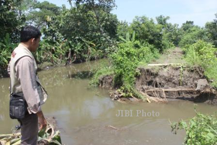 Salah satu warga melihat kondisi tanggul Kali Birin yang jebol di Desa Melikan, Kecamatan Wedi, Selasa (25/2/2014). Jebolnya tanggul di dua titik sepanjang 20 meter itu membuat Dusun Muker di desa setempat terendam air pada Minggu (23-24/2/2014) dan ratusan warga terpaksa mengungsi. (Ahoqib A/JIBI/Solopos)