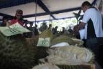 Tim juri melakukan penilaian dengan mencicipi rasa durian dan melihat tekstur durian dalam Festival Durian yang digelar di Balai Desa Matesih, Kecamatan Matesih, Karanganyar, Sabtu (8/3/2014). (Indah SW/JIBI/Solopos)