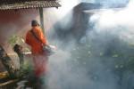 DEMAM BERDARAH WONOGIRI : DBD dan Chikungunya Merebak, Kaloran Difogging
