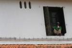 FOTO PURA MANGKUNEGARAN : Jendela Pura Mangkunegaran Dicat Ulang