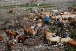 Lahan Baru TPST Piyungan Bakal Berumur Pendek