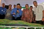 FOTO PERESMIAN JALAN TOL SEMARANG-SOLO : Pengoperasian Jalan Tol Semarang-Solo