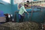 PENGELOLAAN SAMPAH SOLO : Kompos Sipengestu Tak Laku, Pengelola Kurangi Produksi