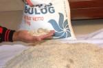 Kondisi raskin yang tidak layak konsumsi di Desa Kepek Wonosari Gunungkidul (David Kurniawan/JIBI/Harian Jogja)