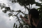 Warga menunjukkan lampu penerangan jalan yang rusak dibakan orang tidak dikenal di Desa Kepoh, Colomadu, Karanganyar, Jawa Tengah, Kamis (10/7/2014). Sedikitnya ada 20 lampu penerangan jalan rusak akibat aksi penembakan tersebut. (Septian Ade Mahendra/JIBI/Solopos)