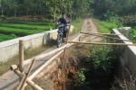 Pengendara sepeda motor melintasi Jembatan Amblo, Lingkungan Ngasinan, Kelurahan Mlokomanis Kulon, Kecamatan Ngadirojo, Wonogiri, Kamis (21/8/2014). (Trianto Hery S./JIBI/Solopos)