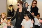 Sahabat Ungkap Brad Pitt Ternyata Tak Cinta Angelina Jolie!