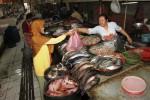 Yatmini, 56, melayani pembeli ikan di salah satu kios Pasar Gede, Solo, Jawa Tengah, Rabu (20/8/2014). Ikan laut seperti bawal, dorang, dan tenggiri rata-rata mengalami kenaikan senilai Rp5.000 per kilogramnya karena pengaruh cuaca. (Septian Ade Mahendra/JIBI/Solopos)