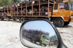 Kusmaji, 53, sopir truk bermuatan sepeda motor baru selesai mengecek kondisi kendaraannya yang terparkir di Jl. Ring Road Mojosongo, Lapangan Plesungan, Gondangrejo, Karanganyar, Jawa Tengah, Rabu (20/8/2014). Truk bermuatan berat melebihi 10 ton kini dialihkan ke jalur selatan terkait perbaikan Jembatan Comal, Pemalang, Jawa tengah. Sejumlah sopir truk mengeluhkan sedikitnya tempat beristirahat di jalur selatan, sehingga menggunakan bahu jalan atau lapangan untuk parkir dan beristirahat. (Ardiansyah Indra Kumala/JIBI/Solopos)