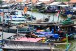 Sejumlah kapal nelayan bersandar tak jauh dari Tempat Pelelangan Ikan (TPI) Muarareja, Tegal, Jawa Tengah, Jumat (29/8/2014). Sepekan terakhir ini, ratusan kapal nelayan di pantai utara (pantura) Pulau Jawa itu tidak melaut akibat kesulitan memperoleh solar. Nelayan kemungkinan baru bisa kembali membeli solar di Stasiun Pengisian Bahan Bakar Nelayan (SPBN) Jongor, Senin (1/9/2014) mendatang. (JIBI/Solopos/Antara/Oky Lukmansyah)