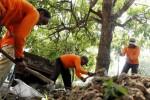 Petugas Dinas Kebersihan dan Pertamanan (DKP) Solo membongkar taman di depan bangunan rumah sakit baru, Jl. Kolonel Sutarto, Jebres, Solo, Jawa Tengah, Selasa (19/8/2014). Menurut salah seorang pegawai DKP Solo, selain membongkar taman, mereka juga diminta menebang dua pohon peneduh jalan. (Ardiansyah Indra Kumala/JIBI/Solopos)