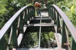 Petugas kebersihan memotong rumput di Taman Sekartaji, Jebres, Solo, Jawa Tengah, Selasa (12/8/2014). Priyanto, salah seorang petugas kebersihan di taman itu, menuturkan minimnya jumlah petugas mengakibatkan taman banyak ditumbuhi rumput liar sehingga tampak kurang terawat. (Ardiansyah Indra Kumala/JIBI/Solopos)