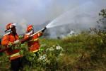 Petugas Pemadam Kebakaran Solo memadamkan api yang membakar semak-semak di lahan kosong di Jl Tanjung, Soropadan, Karangasem. Laweyan, Solo. Jawa Tengah, Jumat (29/8/2014). Api yang membakar semak-semak itu sempat dikawatirkan warga setempat merembet ke permukiman. Petugas pemadam kebakaran berhasil mengendalikan api sebelum menyebabkan situasi fatal. (Sunaryo Haryo Bayu/JIBI/Solopos)