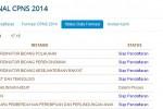 Portal Nasional CPNS 2014 (panselnas.menpan.go.id)