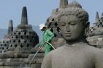 OBJEK WISATA BOROBUDUR : Balai Konservasi Dorong Masyarakat Ikut Lestarikan Borobudur