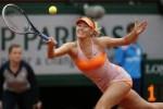 Maria Sharapova (JIBI/Harian Jogja/Reuters)