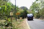 Hutan Sodong, Gunungkidul (JIBI/Harian Jogja/Kusnul Isti Qomah)
