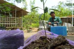 Haryanto menunjukkan digester yang digunakan untuk mengolah kotoran dan urine kambing menjadi pupuk organik dan biogas di Dusun Ndari, Desa Hargobinangun, Pakem, Sleman, Jumat (19/9/2014). (JIBI/Harian Jogja/Rima Sekarani I.N)