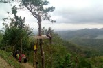 Gardu pandang di sebuah Pohon Cemara menjadi spot favorit para pengunjung untuk berfoto dengan berlatar pemandangan Waduk Sermo dari atas Desa Wisata Kalibiru, Minggu (21/9/2014). (JIBI/Harian Jogja/Holy Kartika N.S)