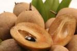 Buah sawo (tropicalfruitnursery.com)