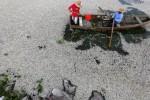 Begini penampakan permukaan Danau Cajititlan yang dipenuhi ikan mati.(Usum.in)