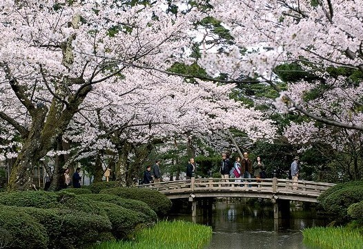 serba lima inilah 5 taman bunga tercantik di dunia