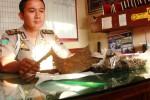 Anggota Polisi Polsek Playen mengamankan benda yang diduga barang purbakala temuan warga Dusun Ngasem Lor, Plembutan, Playen, Senin (6/10/2014). Selain penemuan remukan tulang manusia, juga ditemukan dua senjata mirip kujang. (JIBI/Harian Jogja/David Kurniawan)