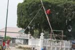 Pangkas Dahan Beringin Alun-alun Utara (JIBI/Harian Jogja/Desi Suryanto)