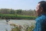Direktur Perusda PDAM Giri Tirta Sari, Wonogiri, Sumarjo (kanan) memantau upaya pegawainya yang bergotong-royong membuat bendung di Sungai Bengawan Solo, Kamis (9/10/2014). Langkah itu mereka lakukan dengan harapan air dapat mengalir lebih deras ke bak penampungan untuk diolah menjadi air bersih. (Trianto Hery Suryono/JIBI/Solopos)
