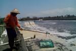Tambak udang di Galur Kulonprogo. (Holy Kartika N.S/JIBI/Harian Jogja)