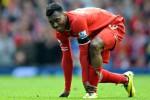 Striker Liverpool Daniel Sturridge mengalami cedera. Diperkirakan absen hingga 2015. Ist/theguardian.co.uk