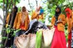 Sejumlah mahasiswi yang sedang melakukan praktik kerja pascabelajar di Dukuh Muludan, Brangkal, Karanganom, Klaten, Jawa Tengah mengamati bunga bangkai yang tumbuh di rumah Mulyono, warga setempat, Selasa (25/11/2014). Pekarangan rumah Mulyono, 51, warga RT 019/RW 010, Dukuh Muludan itu tiba-tiba berubah menjadi habitat bunga bangkai jenis suweg. (Chrisna Chanis Cara/JIBI/Solopos)