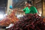 Marti, pedagang cabai di Pasar Legi, Solo, Jawa Tengah menata cabai yang baru dikirim pemasok sayur mayur ke kiosnya, Rabu (5/11/2014). Saat ini, harga berbagai jenis cabai melonjak lebih dari 50% dari harga semula. (Sunaryo Haryo Bayu/JIBI/Solopos)