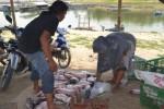 Para petani ikan karamba apung memilah-milah ikan jenis nila di kawasan Waduk Gajah Mungkur (WGM), Selasa (11/11). Ribuan ekor ikan yang dibudidaya di karamba apung WGM mati. (Bony Eko Wicaksono/JIBI/Solopos)