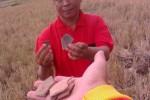 HARTA KARUN SUKOHARJO : Sukoharjo Jadi Surga Pemburu Harta Karun