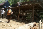 Kandang sapi milik Sastro Hartono warga Dusun Kemiri Desa Kaliagung Kecamatan Sentolo yang tertimpa pohon tumbang, Senin (17/11/2014). (Switzy Sabandar/JIBI/Harian Jogja)