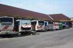 Sejumlah bus malam terparkir di halaman Terminal Utama Buntalan Klaten, Rabu (19/11/2014). Bus tersebut tidak beroperasi menyusul aksi mogok angkutan nasional yang diinisiasi Organda. (Chrisna Chanis Cara/JBI/Solopos)