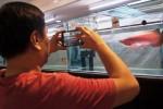 Pengunjung memotret ikan arwana yang dilombakan pada ajang Indonesia Pets Aquatic Expo di Jakarta, Minggu (7/12/2014). Ajang tahunan pameran dan kompetisi ikan hias peliharaan se-Indonesia itu diadakan dalam rangka memperebutkan Piala Menteri Kelautan dan Perikanan. (JIBI/Solopos/Antara/Vitalis Yogi Trisna)