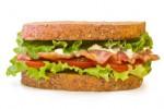 Ilustrasi Sandwich (www.team-sos.com)