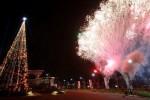 Ilustrasi lampu pada pohon Natal (JIBI/Solopos/Antara/Rivan Awal Lingga)