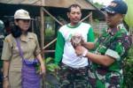 PERTANIAN SUKOHARJO : Usir Tikus, Petani Sukoharjo Manfaatkan Burung Hantu