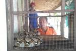 Sutomo, 50, warga Temuireng RT 003/ RW 012 Tegalgede Karanganyar melihat ular yang ditemukan warga di tepi sungai, Minggu (14/12/2014). Ular dimasukkan ke bekas kandang tupai dan diletakkan di teras rumah salah satu warga. (Sri Sumi Handayani/JIBI/Solopos)