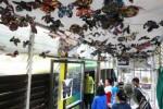 Sebuah karya instalasi kupu-kupu dipasang pada langit-langit halte Trans Jogja di Jalan Margomulyo, Yogyakarta, seperti terlihat pada Sabtu (14/6/2014). Pada 2016 mendatang sedikitnya 100 bus baru akan beroperasi.