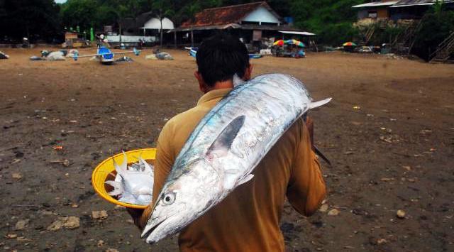 Nelayan sepulang melaut di Pantai Baron, Senin(19/1/2015). (Juli Nugroho/JIBI/Bisnis)