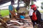 Penjualan ikan jambal Waduk Gajahmungkur di Mojolaban, Rabu (14/1/2015). (Sunaryo Haryo Bayu/JIBI/Solopos)