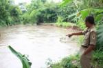 Camat Bayat, Edy Purnomo, menunjukkan aliran Sungai Dengkeng yang deras, Selasa (13/1/2015). Derasnya aliran sungai itu membuat satu pekarangan milik warga hilang. (Taufiq Sidik/JIBI/Solopos)